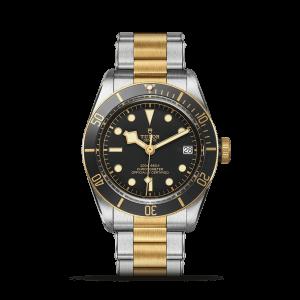 Tudor Black Bay S&G Watch