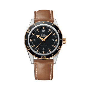 Omega Seamaster 300 Co-Axial Master Chronometer Black Watch